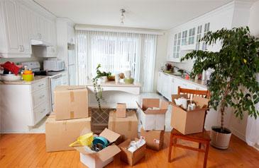 Los electrodomésticos y muebles de la cocina, importantes
